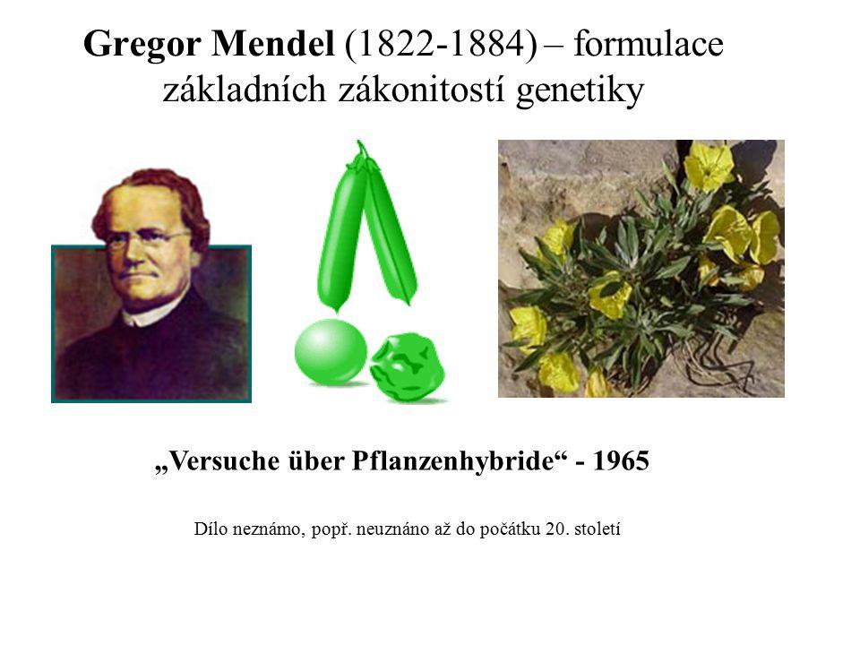Gregor Mendel (1822-1884) – formulace základních zákonitostí genetiky