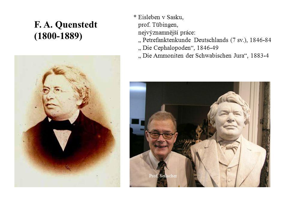 F. A. Quenstedt (1800-1889) * Eisleben v Sasku, prof. Tübingen,