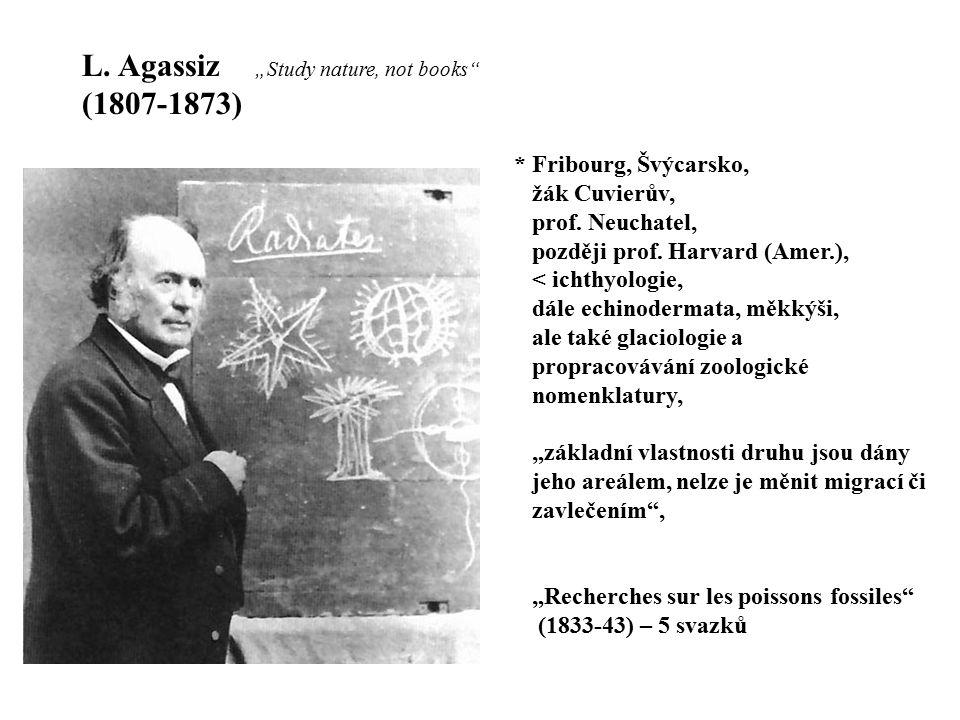 L. Agassiz (1807-1873) * Fribourg, Švýcarsko, žák Cuvierův,