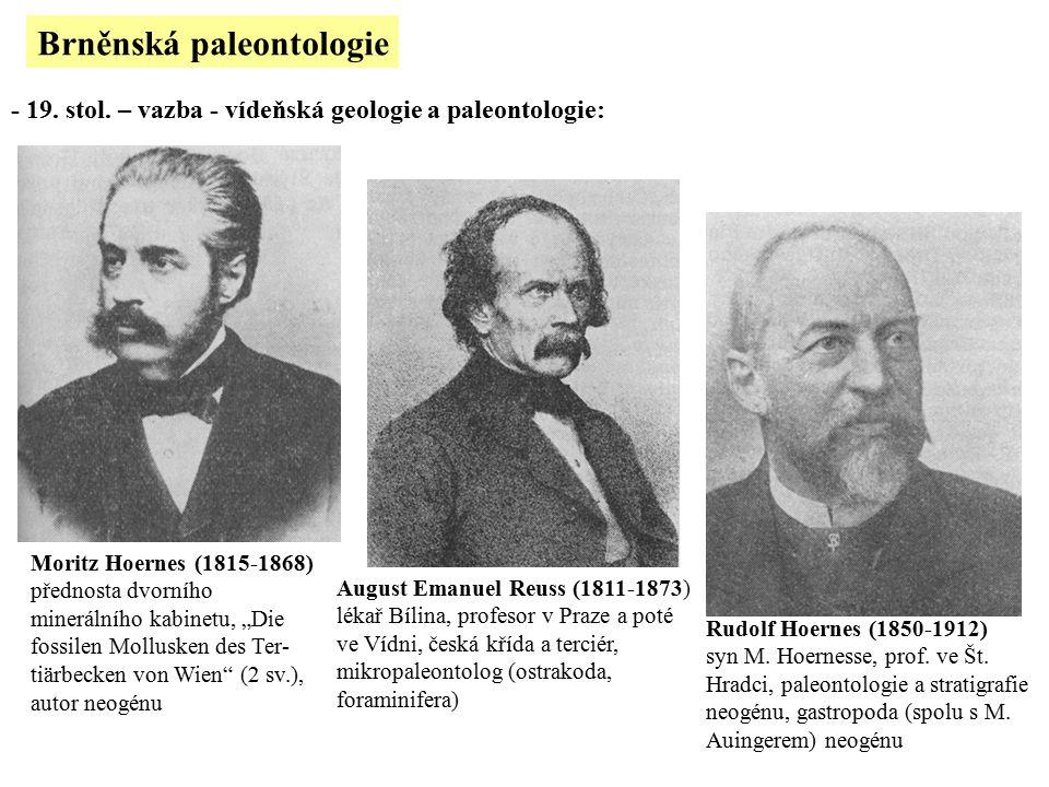 Brněnská paleontologie