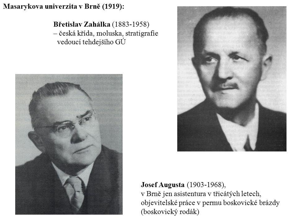 Masarykova univerzita v Brně (1919):