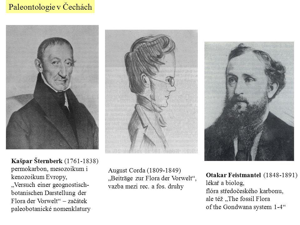 Paleontologie v Čechách