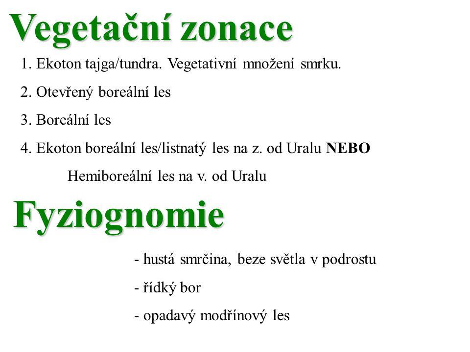 Vegetační zonace Fyziognomie