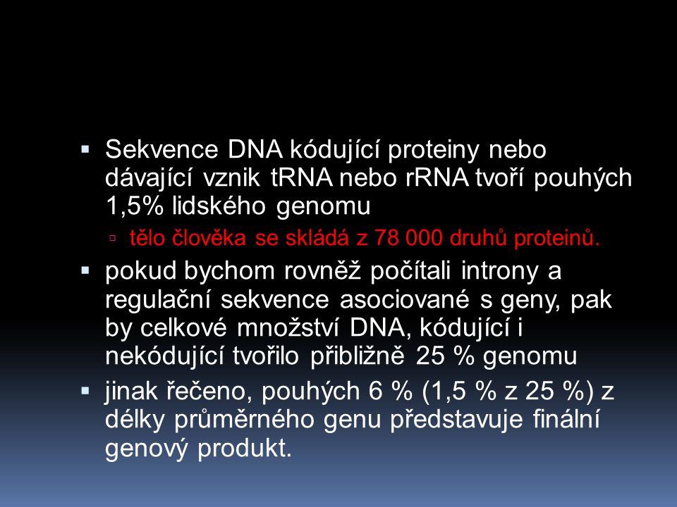 Sekvence DNA kódující proteiny nebo dávající vznik tRNA nebo rRNA tvoří pouhých 1,5% lidského genomu