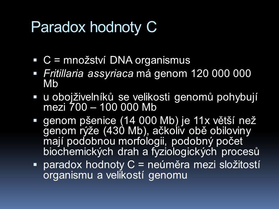 Paradox hodnoty C C = množství DNA organismus