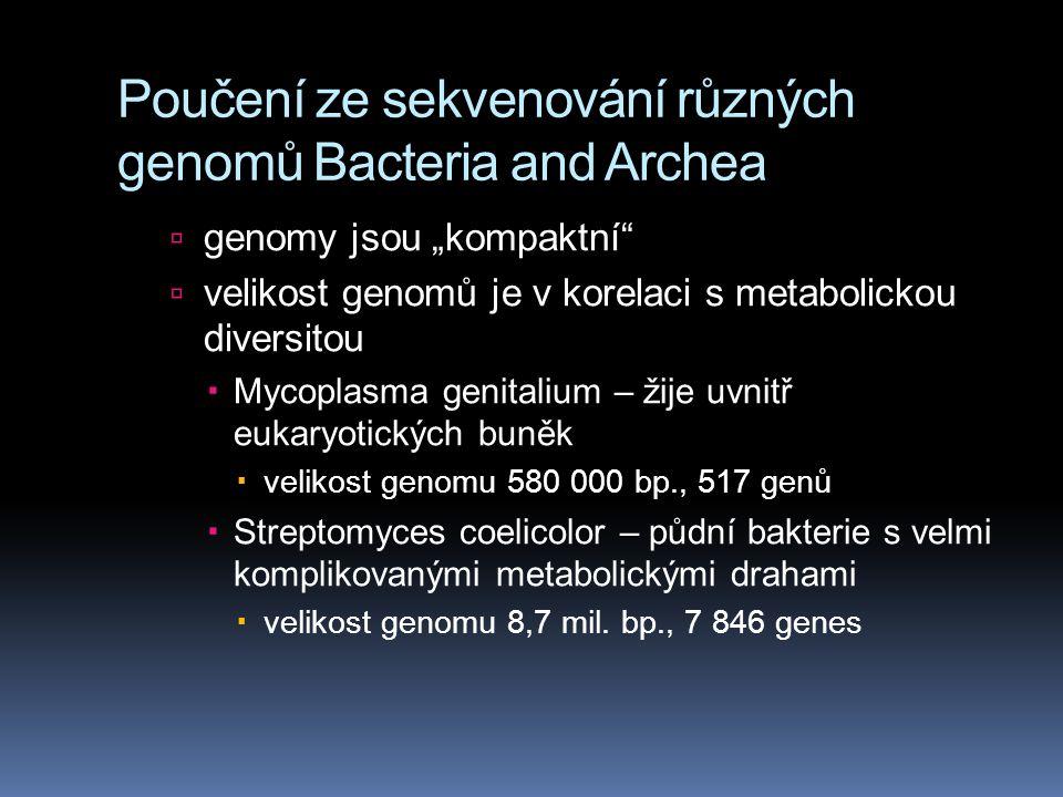 Poučení ze sekvenování různých genomů Bacteria and Archea