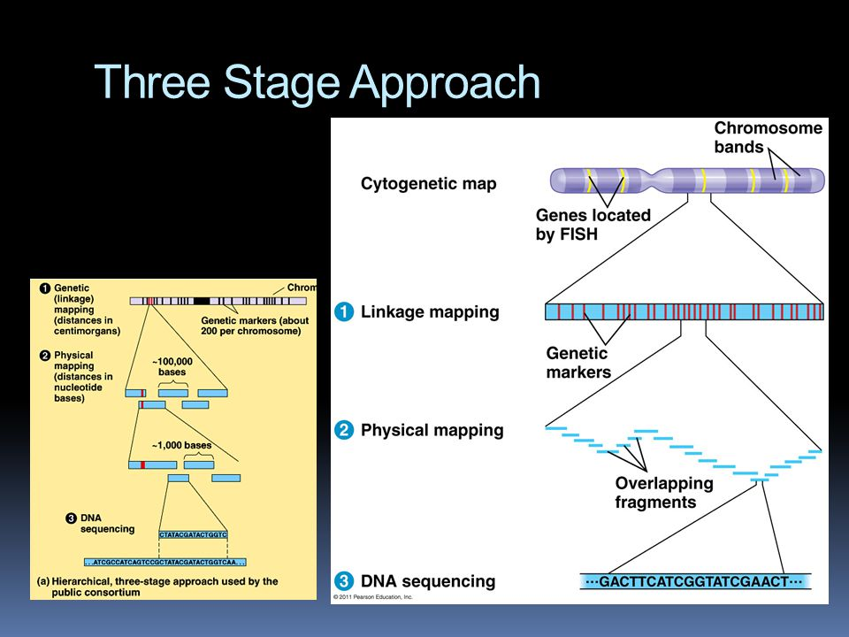 Three Stage Approach
