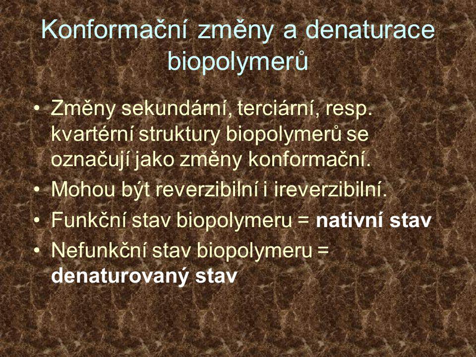 Konformační změny a denaturace biopolymerů