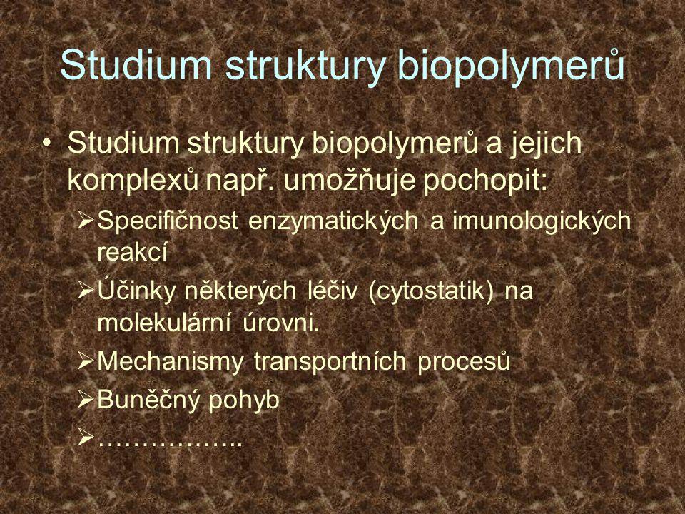 Studium struktury biopolymerů