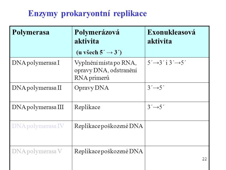 Enzymy prokaryontní replikace