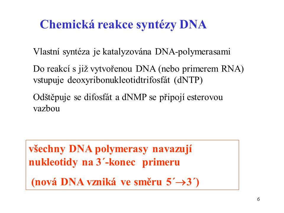 Chemická reakce syntézy DNA