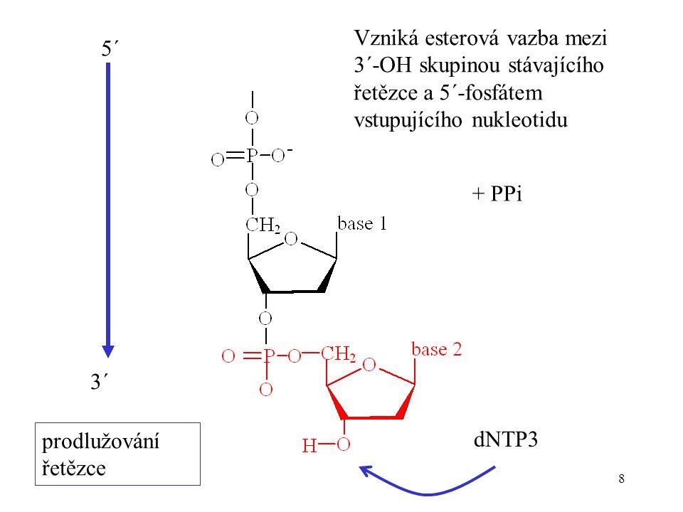 Vzniká esterová vazba mezi 3´-OH skupinou stávajícího řetězce a 5´-fosfátem vstupujícího nukleotidu