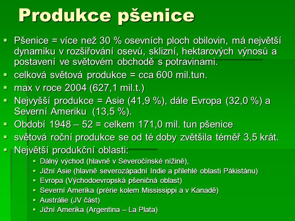 Produkce pšenice