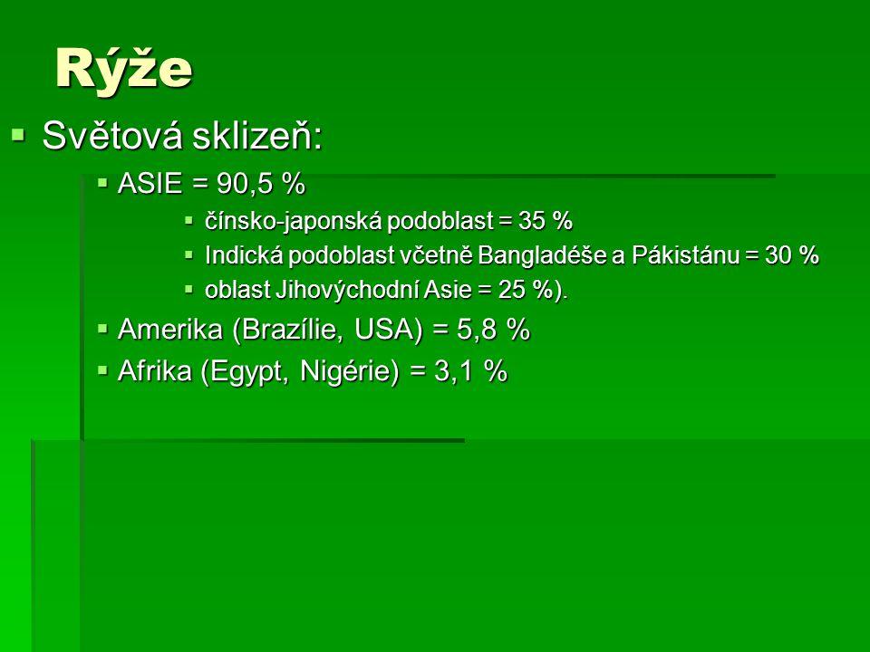 Rýže Světová sklizeň: ASIE = 90,5 % Amerika (Brazílie, USA) = 5,8 %