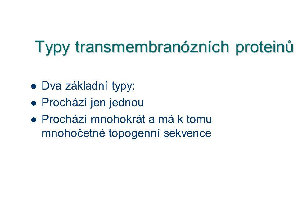 Typy transmembranózních proteinů