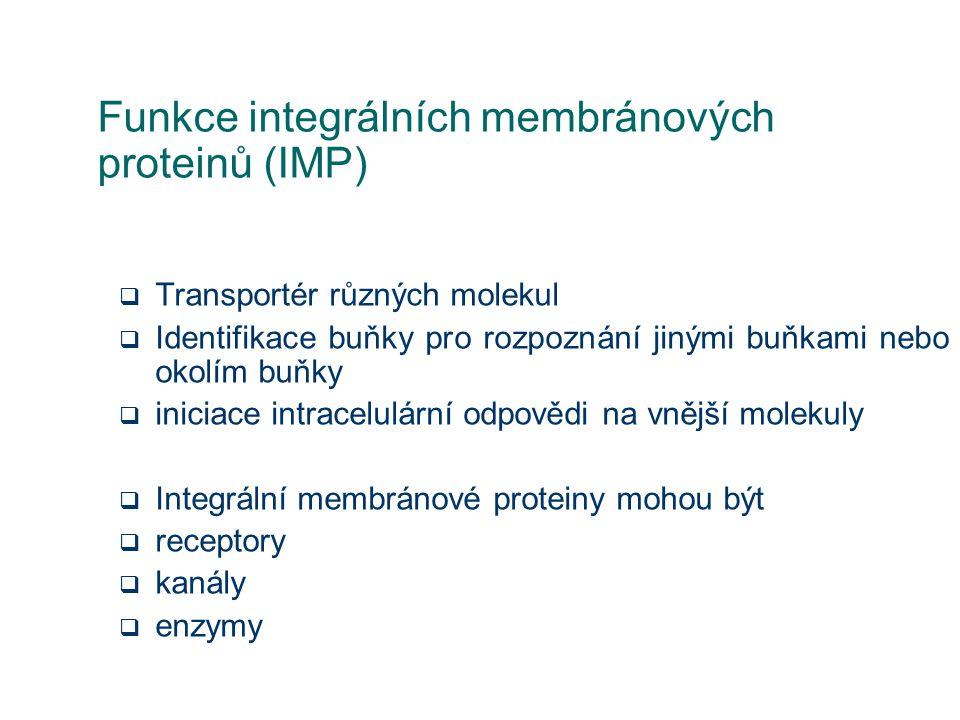 Funkce integrálních membránových proteinů (IMP)