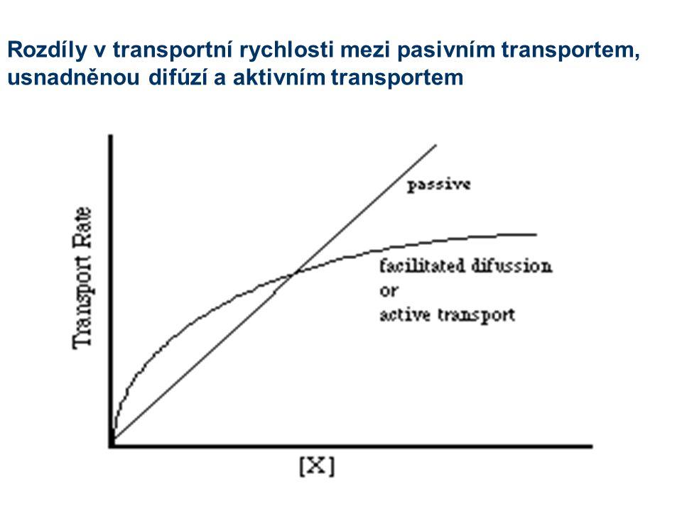 Rozdíly v transportní rychlosti mezi pasivním transportem, usnadněnou difúzí a aktivním transportem