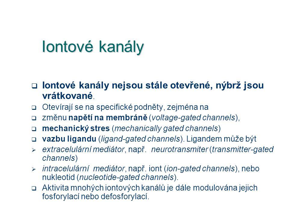 Iontové kanály Iontové kanály nejsou stále otevřené, nýbrž jsou vrátkované. Otevírají se na specifické podněty, zejména na.