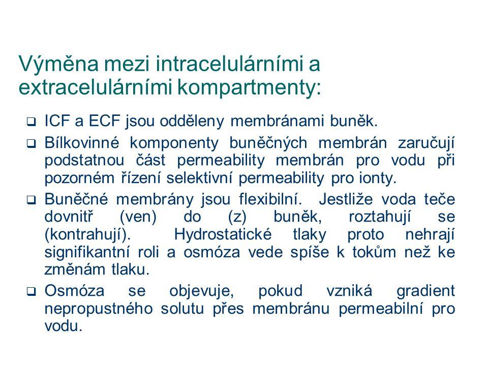 Výměna mezi intracelulárními a extracelulárními kompartmenty: