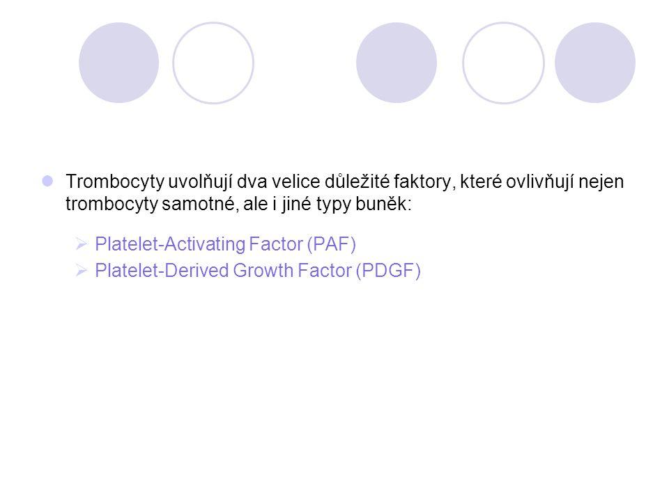 Trombocyty uvolňují dva velice důležité faktory, které ovlivňují nejen trombocyty samotné, ale i jiné typy buněk:
