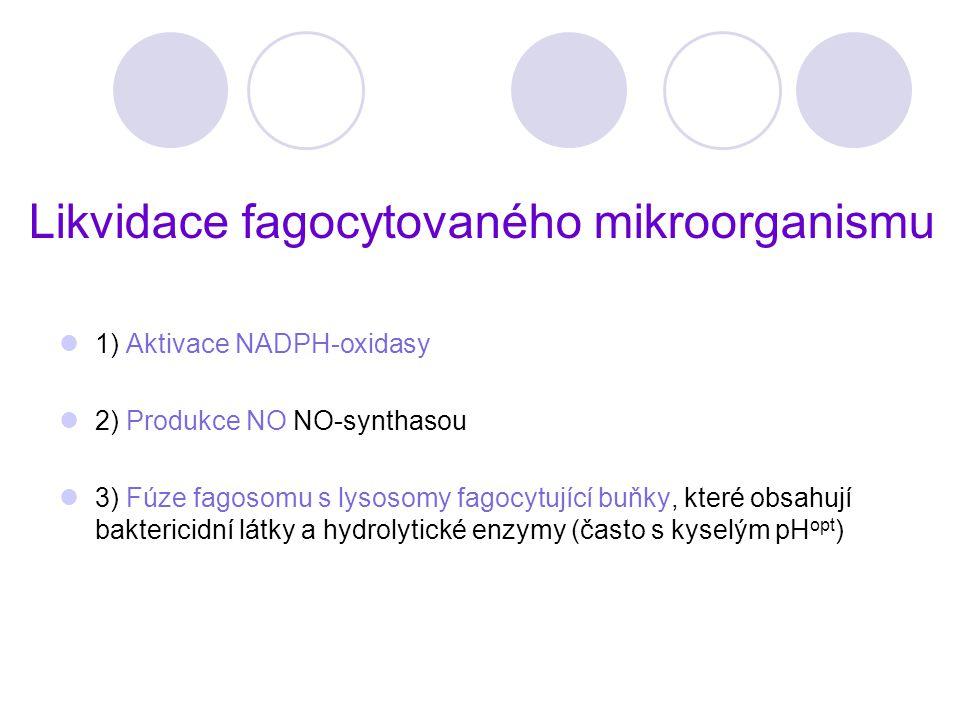 Likvidace fagocytovaného mikroorganismu