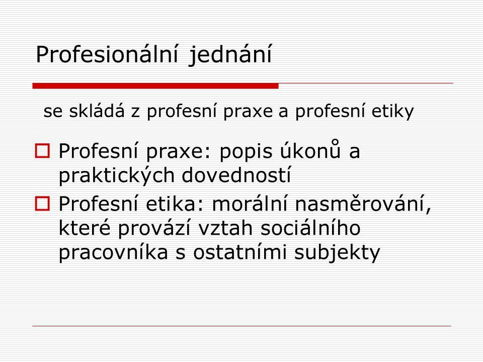 Profesionální jednání se skládá z profesní praxe a profesní etiky