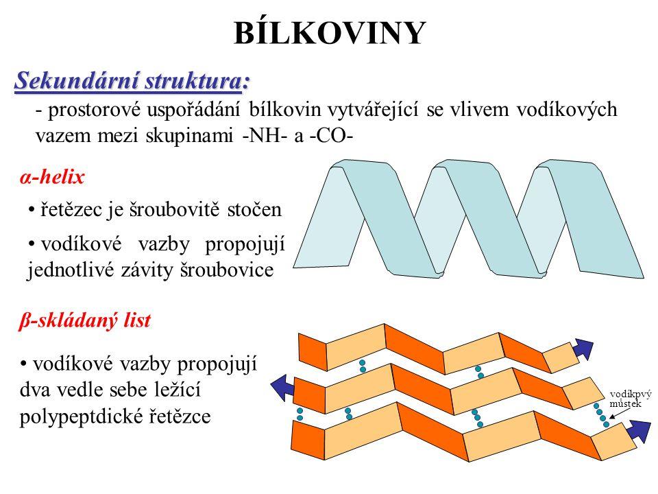 BÍLKOVINY Sekundární struktura: