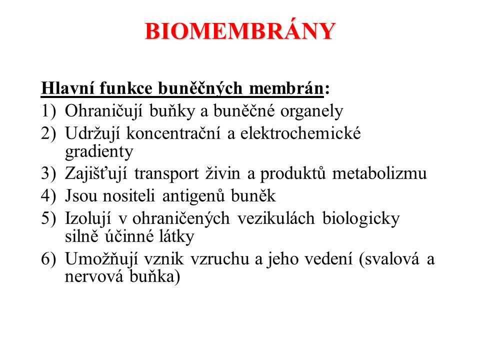 BIOMEMBRÁNY Hlavní funkce buněčných membrán: