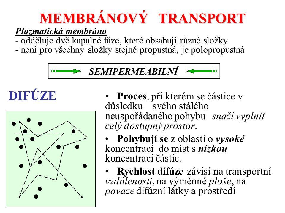 MEMBRÁNOVÝ TRANSPORT DIFÚZE