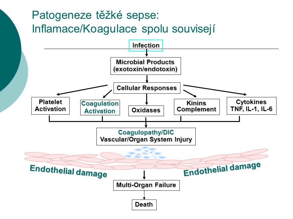 Patogeneze těžké sepse: Inflamace/Koagulace spolu souvisejí