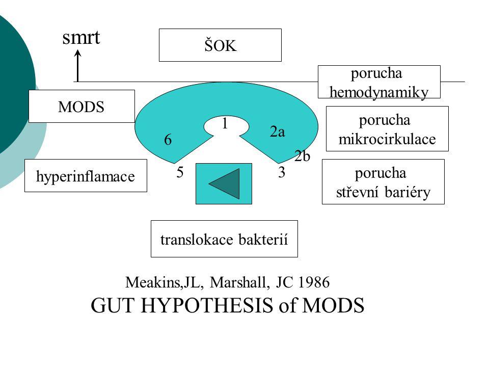 smrt GUT HYPOTHESIS of MODS ŠOK porucha hemodynamiky MODS porucha