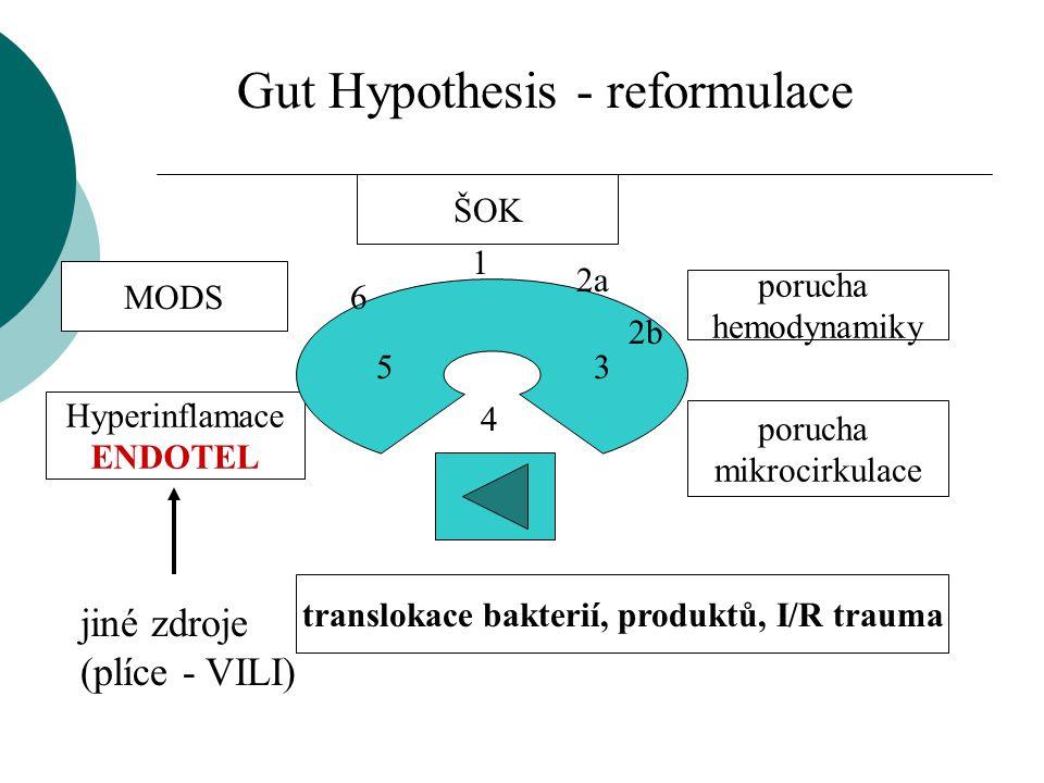 translokace bakterií, produktů, I/R trauma