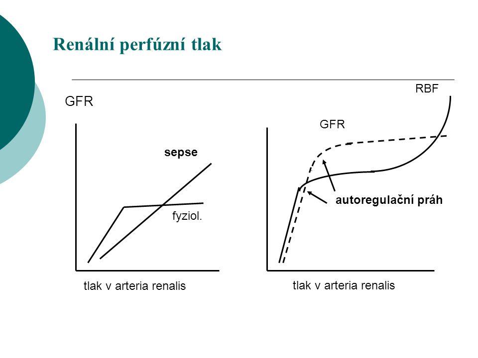 Renální perfúzní tlak GFR RBF GFR sepse autoregulační práh fyziol.