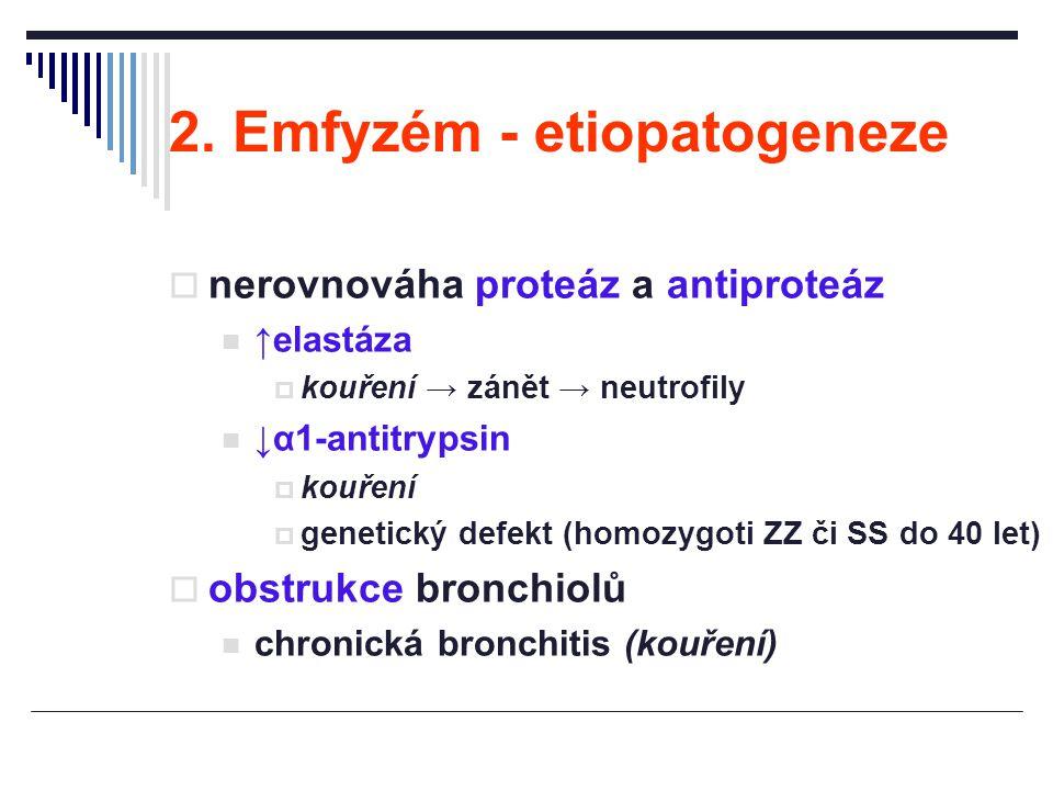 2. Emfyzém - etiopatogeneze