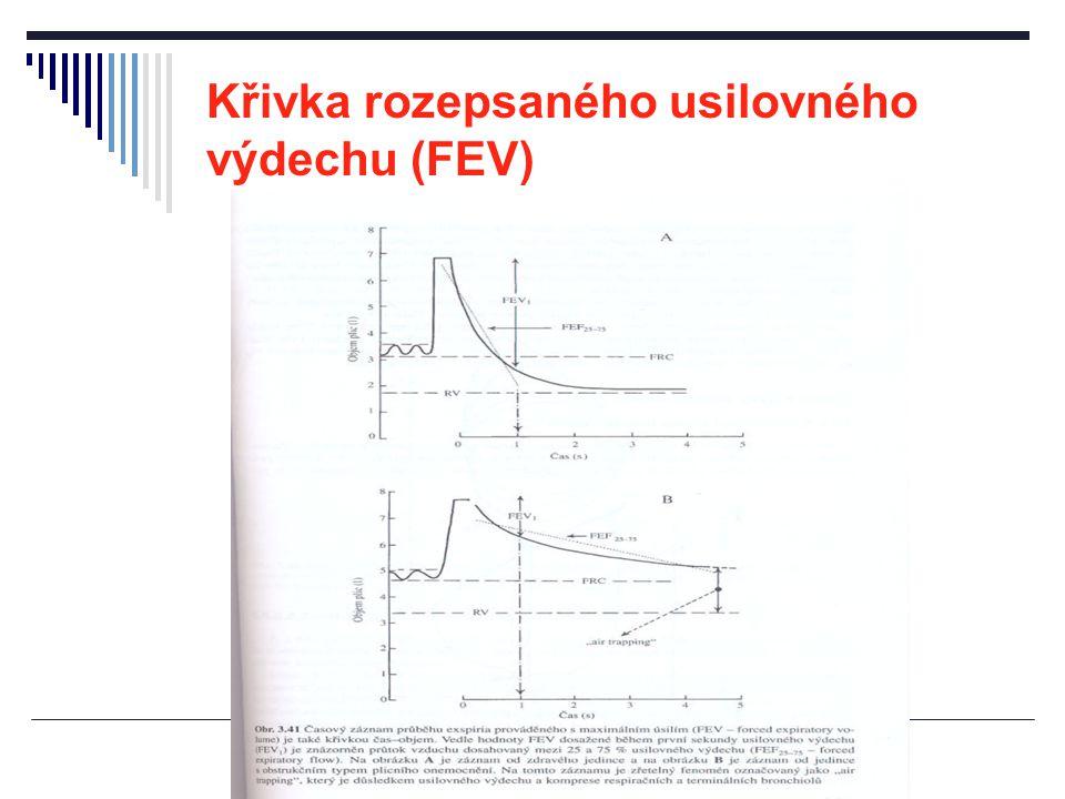 Křivka rozepsaného usilovného výdechu (FEV)