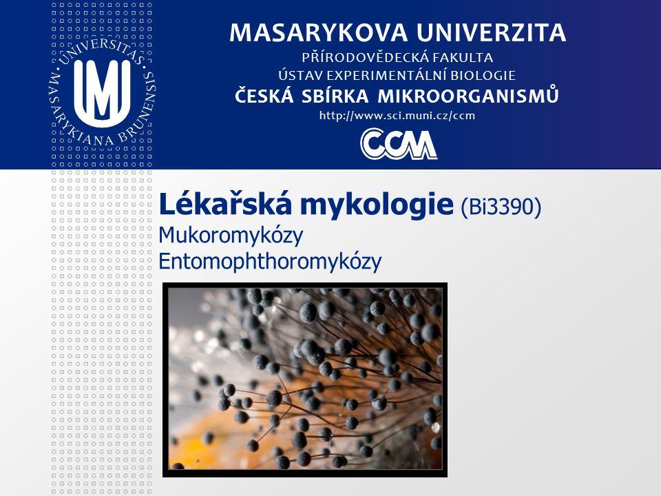 Lékařská mykologie (Bi3390) Mukoromykózy Entomophthoromykózy