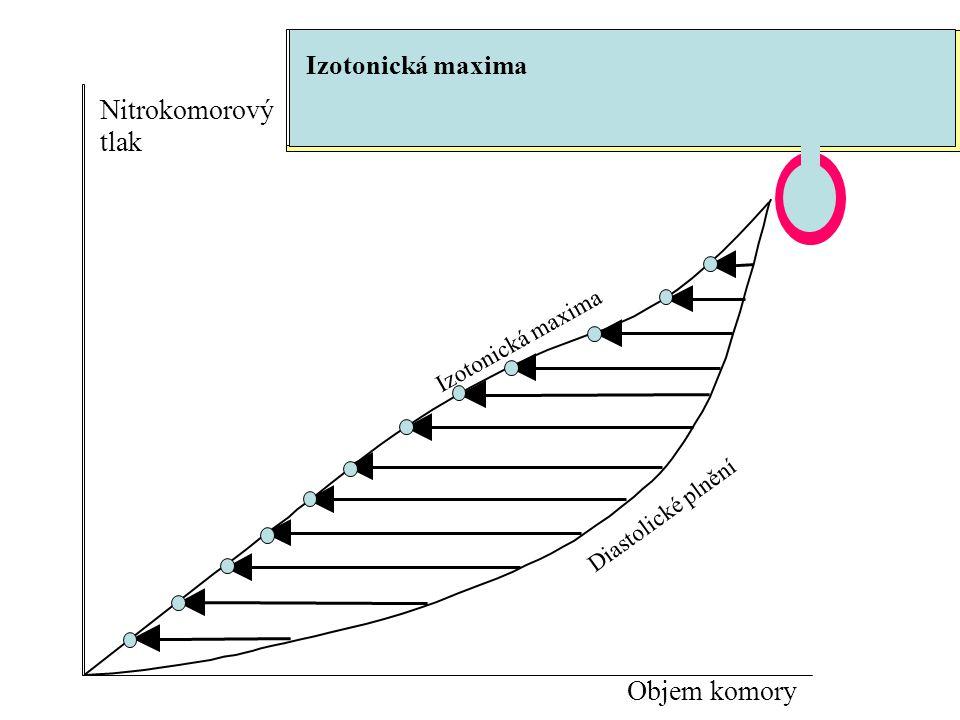 Nitrokomorový tlak Objem komory Izotonická maxima Izotonická maxima
