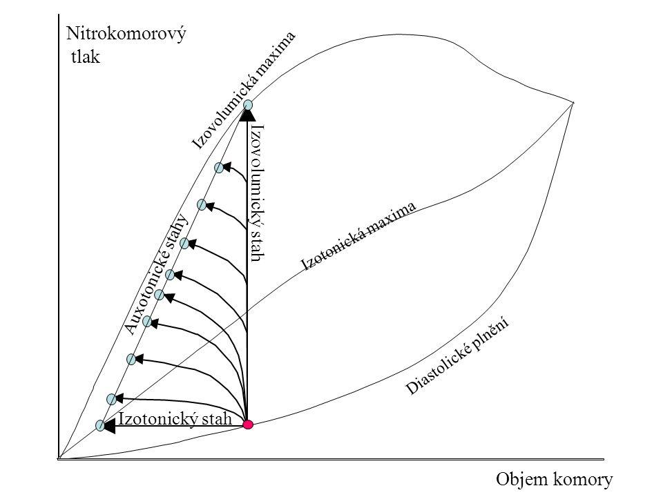 Nitrokomorový tlak Objem komory Izovolumický stah Izotonický stah