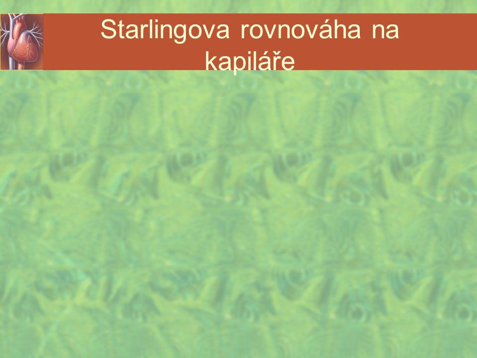 Starlingova rovnováha na kapiláře