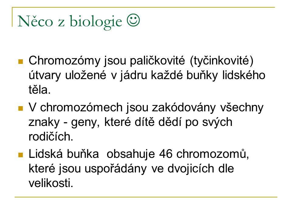 Něco z biologie  Chromozómy jsou paličkovité (tyčinkovité) útvary uložené v jádru každé buňky lidského těla.