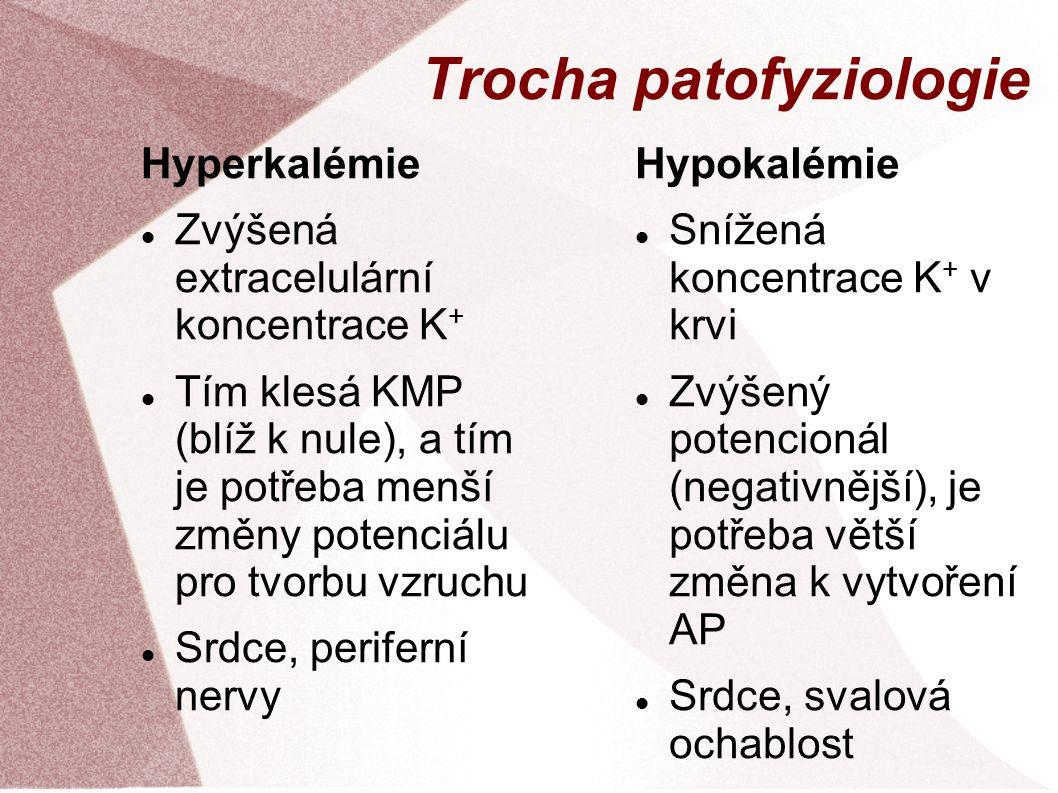 Trocha patofyziologie