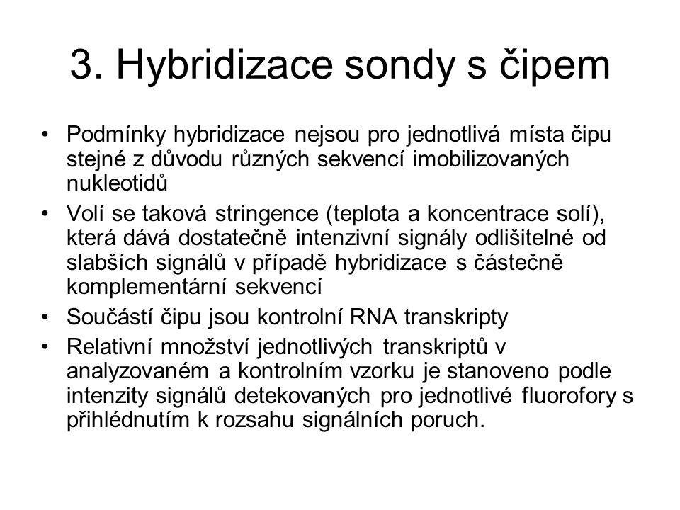 3. Hybridizace sondy s čipem