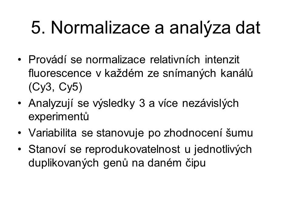 5. Normalizace a analýza dat