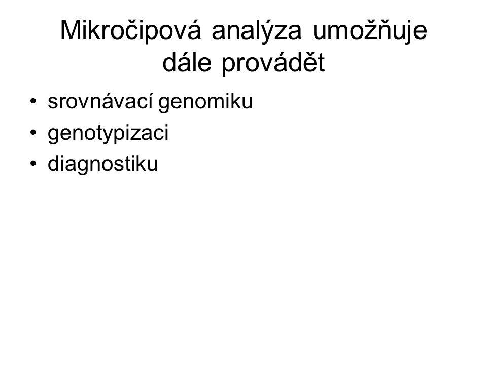Mikročipová analýza umožňuje dále provádět