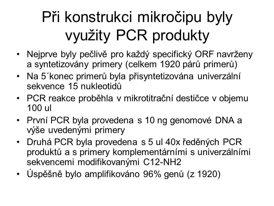 Při konstrukci mikročipu byly využity PCR produkty