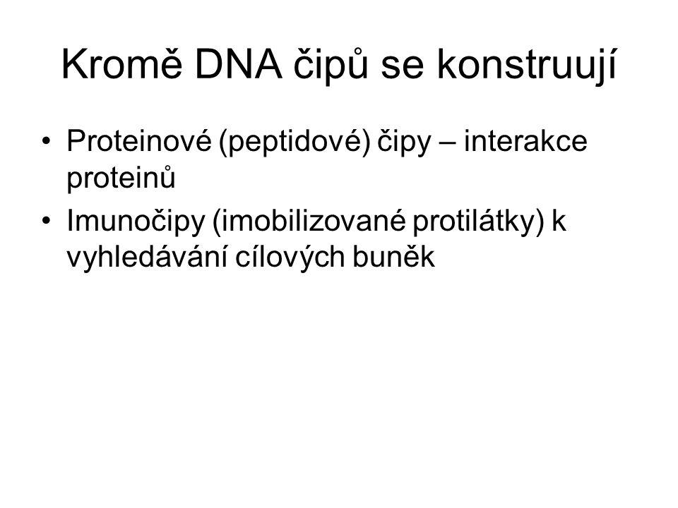 Kromě DNA čipů se konstruují