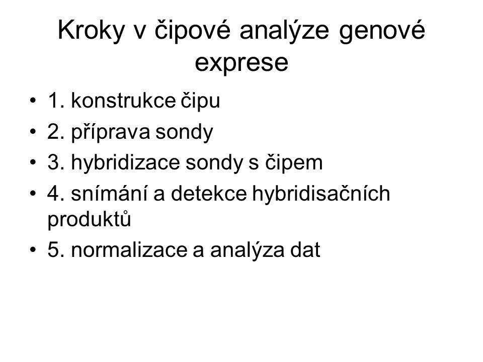 Kroky v čipové analýze genové exprese
