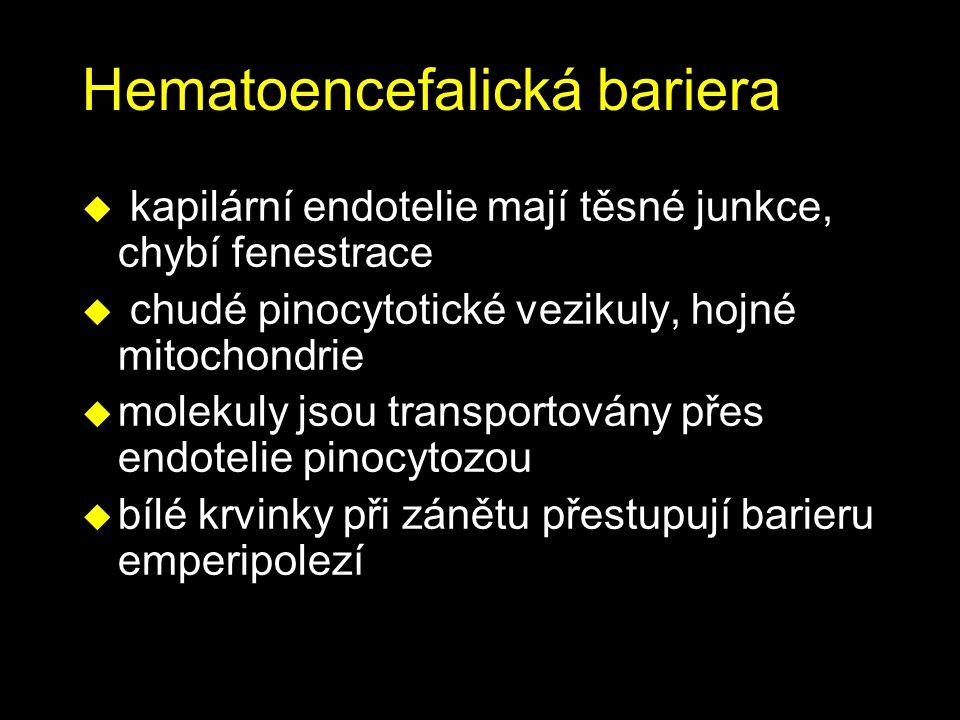Hematoencefalická bariera
