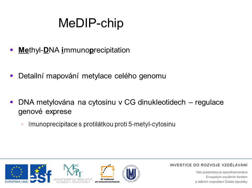 MeDIP-chip Methyl-DNA immunoprecipitation