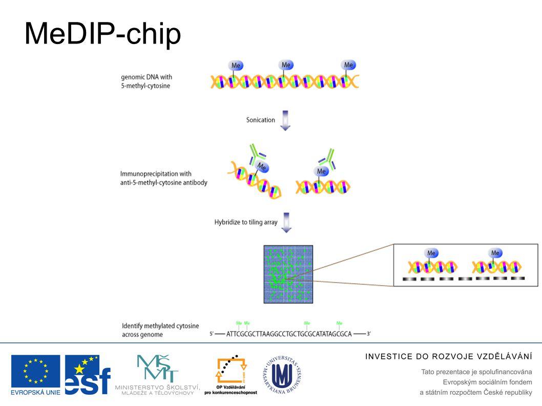 MeDIP-chip